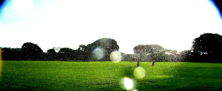 Edward K. Scott . S/ título, 2012 . Série: Partículas . fotografia . díptico . 90 x 35 cm (imagem 02)