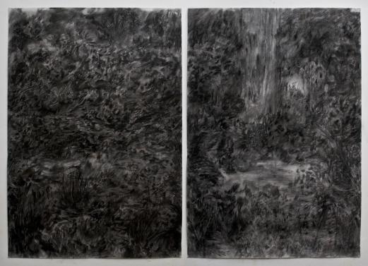 Camilo Meneghetti, Sem Título, 2013. Carvão sobre papel. 110 x 75 cm cada, díptico
