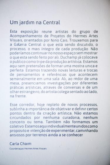 foto Fernanda Preto