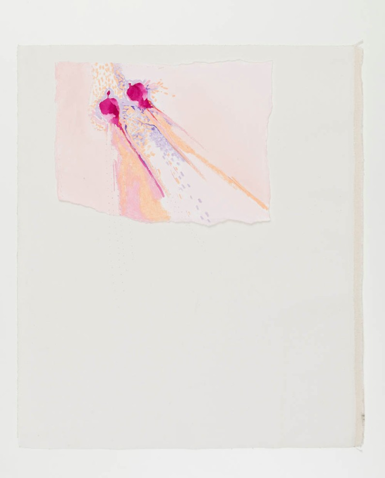 Susy Miranda Aziz . Sem título, 2013 . aquarela e pastel sobre papel, aplicado em lona . 60 x 51 cm