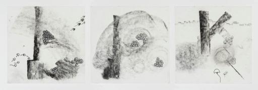 Susy Miranda Aziz . Sem título, 2013 . carvão e lápis sobre papel arroz . 20 x 20 cm