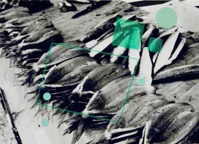 Alice Quaresma . Nest #14, 2014 . Série: Nest . Lápis e adesivo colorido sobre fotografia . 13 x 18 cm