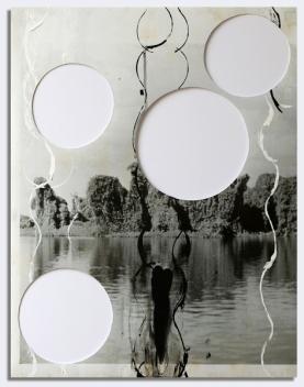 Cida Junqueira, Pantanal III, 2014, acrílica sobre papel fotográfico em apropriação de foto, 88 X 66 cm