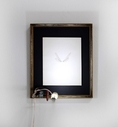 """Drac"", 2014 . Assemblage Wooden frame, paper, dragonfly wings, motor, copper rod, clamp, LED, cable and adapter 27 x 32 x 25 cm"