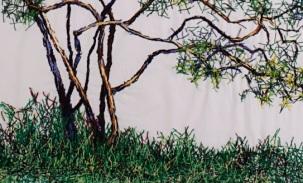 Detalhe da imagem anterior, Limoeiro