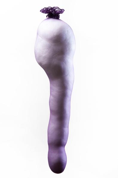 Luisa Callegari, Perna, 2016. Série: Nylon. Meia de nylon e enchimento de poliéster. 78x16x19 cm