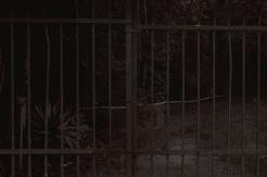 Daniel Dayan, Grade, 2017 . Série: Impreciso . Fotografia Digital e Pós Produção em Photoshop. Arquivo digital em alta resolução
