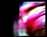 Daniel Dayan, Strange 10 , 2013 . Série: Figuras Estranhas . Fotografia Digital e Pós Produção em Camera 360 e Photoshop. Arquivo digital em alta resolução