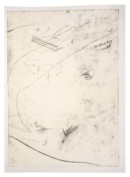 """Ana Takenaka, """"Natureza do Rabisco #1"""", 2014. Série: Natureza do Rabisco. Ponta-seca sobre matriz de polipropileno. Impressão em duas cores sobre papel Canson 300g.150 x 97 cm"""