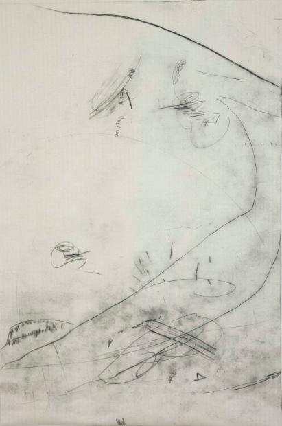"""Ana Takenaka, """"Natureza do Rabisco #2"""", 2014. Série: Natureza do Rabisco. Ponta-seca sobre matriz de polipropileno. Impressão em duas cores sobre papel japônes.150 x 97 cm. (Prêmio Aquisição - 44º Salão de Arte Contemporânea Luiz Sacilotto)"""