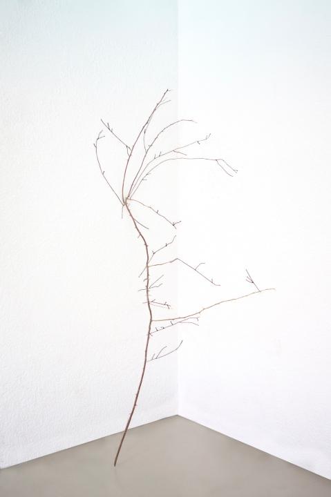 Thais Stoklos Desenho, 2016. Série: Galhos . Galho, linha de costura, 120 x 60 x 63 cm