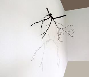 Thais Stoklos Horizonte detalhe, 2016. Série: Galhos . Instalação de galho e linha de costura, 85 x 110 x 31 cm