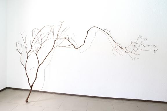 Thais Stoklos Sem título detalhe, 2016. Série: Galhos . Instalação de galho e linha de costura, 163 x 180 x 57 cm
