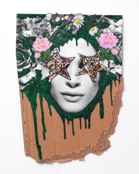 Marcelo Brasiliense, Bee a Star, 2017. Glitter, lantejoulas e impressos sobre papelão. 57 x 41 cm