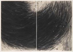 Gustavo Aragoni, Sem título, 2018 . Pastel, carvão e massa acrílica sobre papel . 100x140cm (díptico)